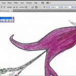 tracing with pen tool in Illustrator