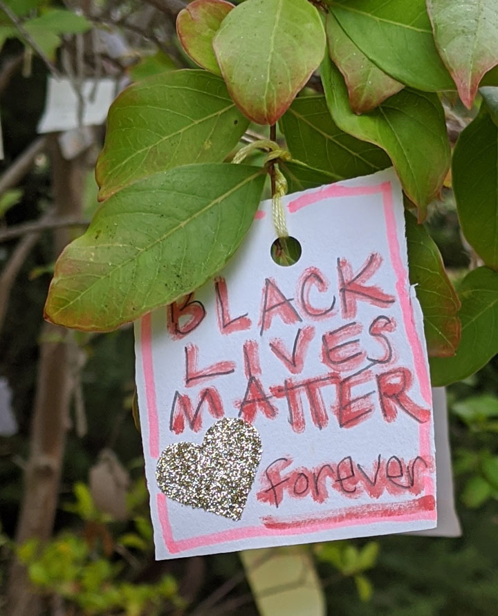 black-lives-matter-and-exploring-privilege
