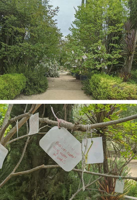 wishing tree with black live matter wishes pasadena ca